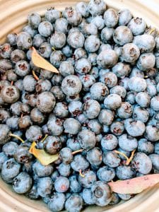 Blueberries from Cranguyma Farms